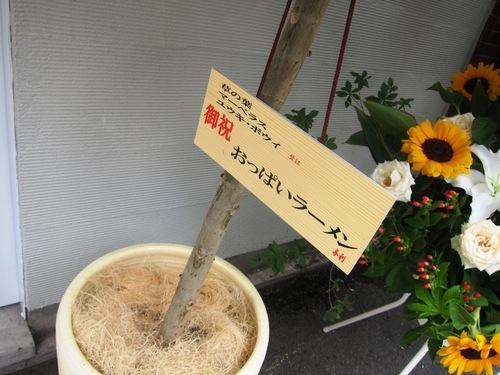 蔦の葉~Japanese Soba Noodles 蔦~ (巣鴨) 醤油そば