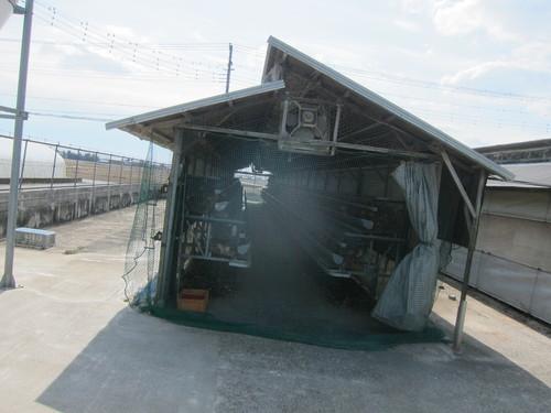 矢部養鶏場 (川島町) トップランでTKG