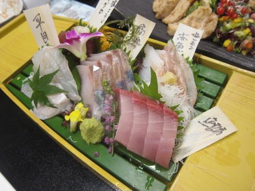 ホットクルージングナイト2016 (屋形船) 東京ホルモンズ